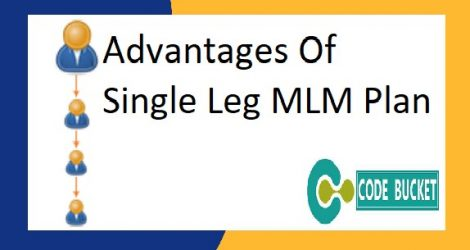 Single leg MLM Software
